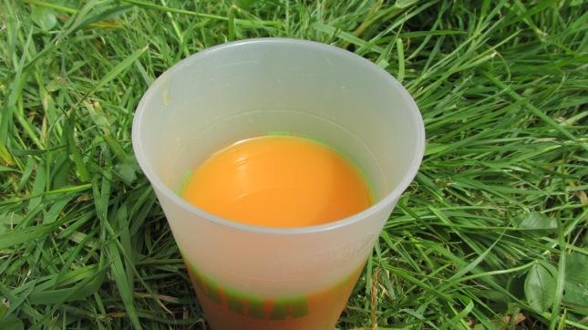 jus orange, carotte, gingembre j'avais préparé 1.5litre et il est partit très vite )