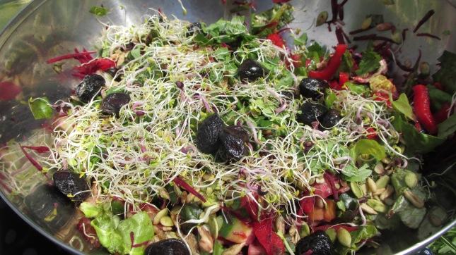 salade de graine germées diverses, ( de nos amis en retour d'Hippocrate)