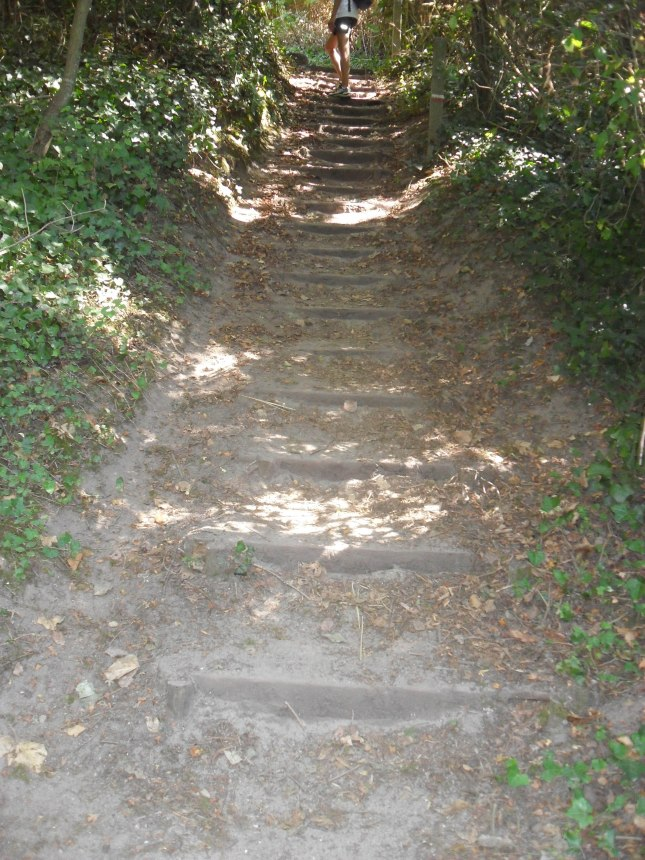 un des nombreux escaliers du parcours
