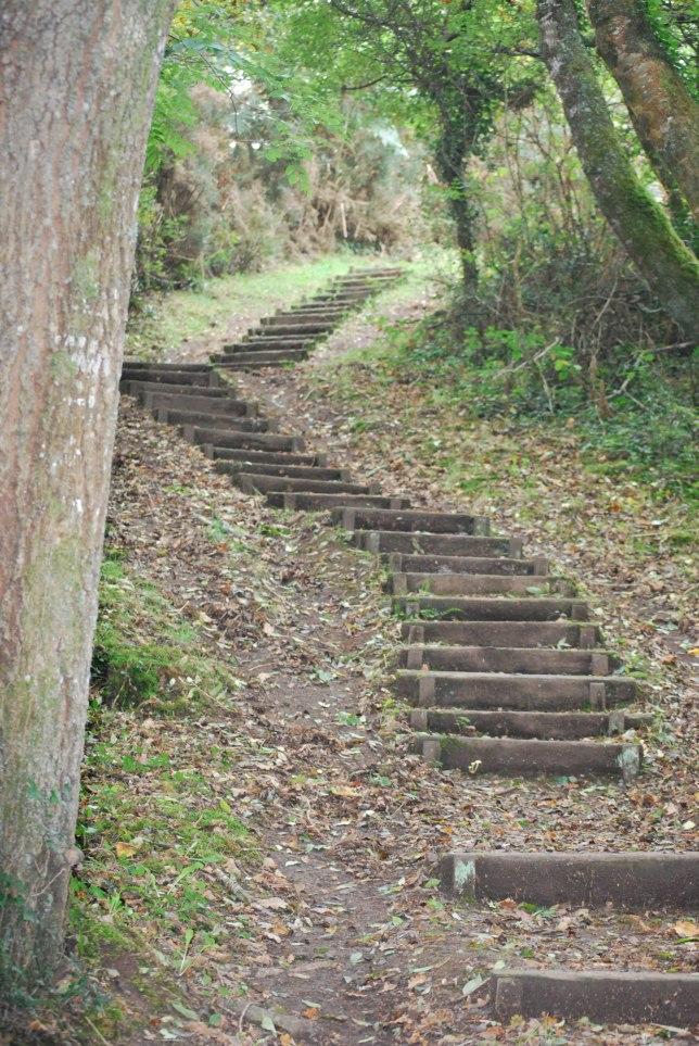 un des nombreux escaliers