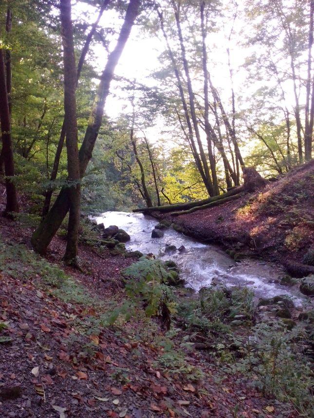 le cours d'eau juste avant sa chute