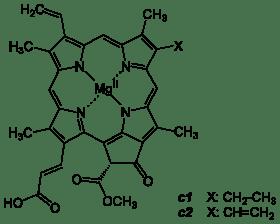 280px-Chlorophyll_c1_c2.svg